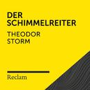 Storm: Der Schimmelreiter (Reclam Hörbuch)/Reclam Hörbücher x Hans Sigl x Theodor Storm