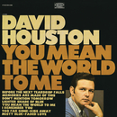 You Mean the World to Me/David Houston
