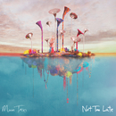 Not Too Late/Moon Taxi