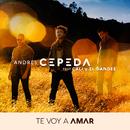 Te Voy a Amar feat.Cali Y El Dandee/Andrés Cepeda