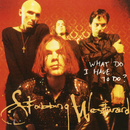 What Do I Have To Do?/Stabbing Westward