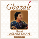 Ghazals, Vol. 2/Ustad Aslam Khan