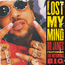 Lost My Mind feat.The Notorious B.I.G./Ro James
