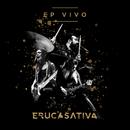 EP Vivo/Eruca Sativa