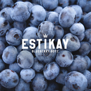 Blueberry Boyz/Estikay