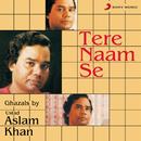 Tere Naam Se/Ustad Aslam Khan