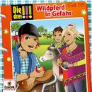 055/Wildpferd in Gefahr/Die drei !!!