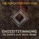 """Endzeitstimmung (""""So sieht's aus"""" Rock Remix by Crystin Fawn)/Die Fantastischen Vier"""