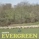 Evergreen/Calcutta