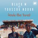 Gainde (Les Lions) feat.Youssou Ndour/Black M