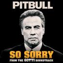 So Sorry/Pitbull