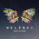 Aves de Paso/Melendi