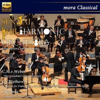 仙台フィルハーモニー管弦楽団 ブラームス:交響曲第2番 ユベール・スダーン(指揮) 第306回定期演奏会