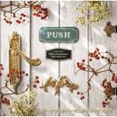 PUSH/チーナフィルハーモニックオーケストラ