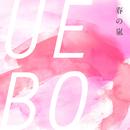 春の嵐/UEBO