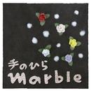 手のひら/marble