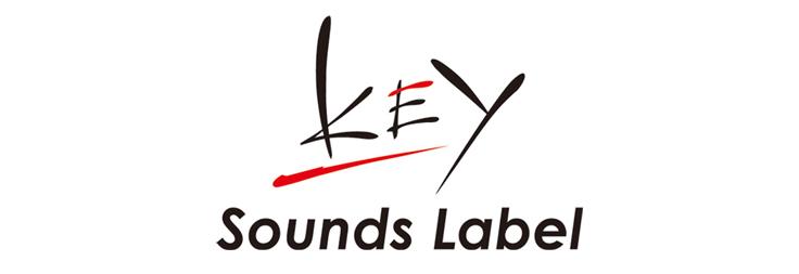 Kết quả hình ảnh cho visual art's key sound label