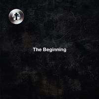 The Beginning/ONE OK ROCK