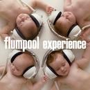 experience/flumpool