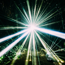LIGHT/フレデリック