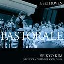 ベートーヴェン:交響曲第6番 <田園>/金聖響