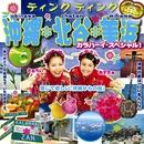 沖縄・北谷・美浜 カラハーイ・スペシャル!/ティンク ティンク