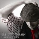 FIGHT FOR LOVE/ELLIOTT YAMIN
