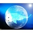 月とクジラ/峰香代子