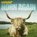 HORN AGAIN/the pillows