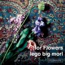 for Flowers/lego big morl