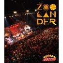 lecca LIVE 2013 ZOOLANDER/lecca