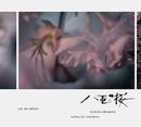 NHK大河ドラマ「八重の桜」オリジナル・サウンドトラック II[96kHz24bit]/坂本龍一 | 中島ノブユキ