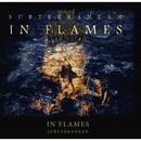 SUBTERRANEAN/IN FLAMES