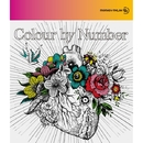 Colour by Number/MONKEY MAJIK