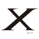 セタップ!仮面ライダーX(RIDER CHIPS ver.)/RIDER CHIPS