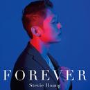 Forever/Stevie Hoang