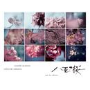 NHK大河ドラマ「八重の桜」- オリジナル・サウンドトラック コンプリート盤/坂本龍一 | 中島ノブユキ