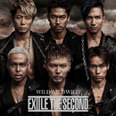WILD WILD WILD/THE SECOND from EXILE