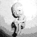 蒼河/人穴の会