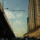 A shadow in the city/TryEgg