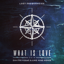 What Is Love 2016 (Dimitri Vegas & Like Mike Remix)/Lost Frequencies