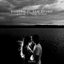Aren't You High (feat. Sam Bruno) - Single/Bisbetic