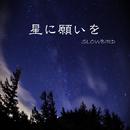 星に願いを/SLOWBIRD