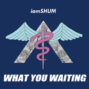 WHAT YOU WAITING/iamSHUM