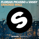Cracked Wall/Florian Picasso x VASSY
