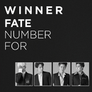 FATE NUMBER FOR/WINNER