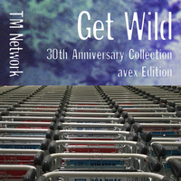 GET WILD 30th Anniversary Collection - avex Editioni??TM NETWORK