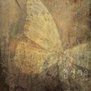 1st EP/Sensibility Healing