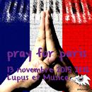 Pray for Paris (Gray Wolf,Pianobebe)/Lupus et Musica