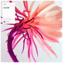 Bloom - Single/EDX